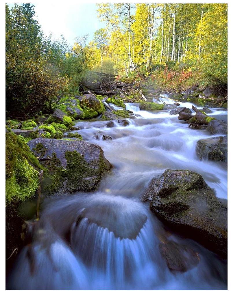 quellwasser-vitalisierung