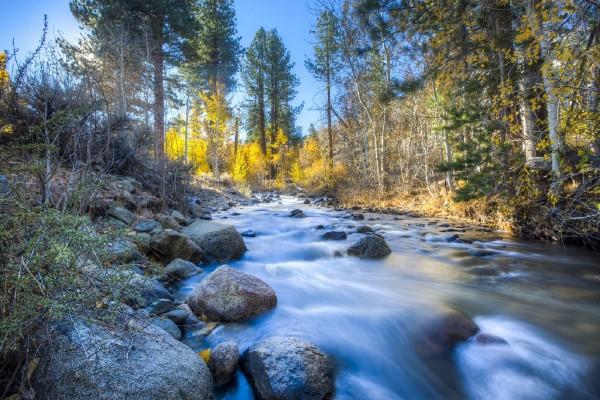 stream-1865419_1920